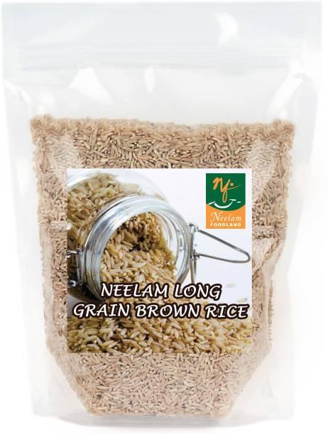 Neelam Foodland Long Grain Brown Rice, 500g Brown Raw Rice (Long Grain, Raw)