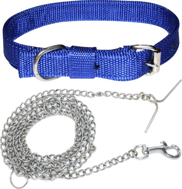 ADIOS Dog Belt Combo for Small Dogs & Puppies Dog Collar & Chain
