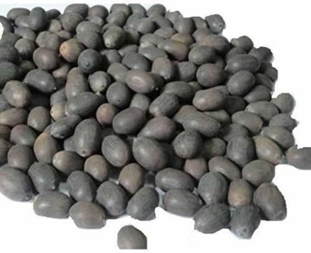 Nurserynitra KAMAL GATTA Seed