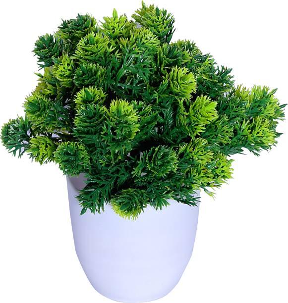 S-Biv Bonsai Wild Artificial Plant  with Pot