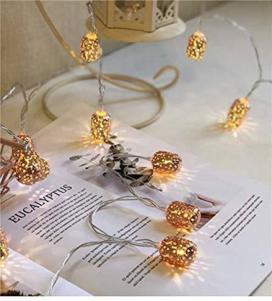 Home Delight 10 inch Gold Rice Lights