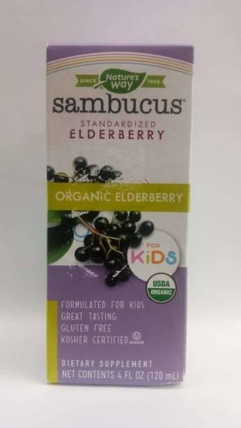 Nature's Way Sambucus Standardized Organic Elderberry for Kids Berry Flavor 4 fl oz Elderberry
