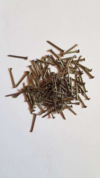 jhanvi trade 20 mm Collated Nails