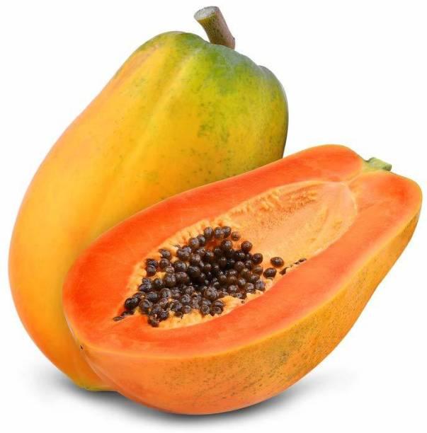 sporos Papaya Seed