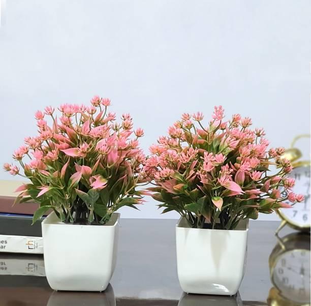 Flipkart SmartBuy Set of 2 Bonsai Artificial Plant  with Pot