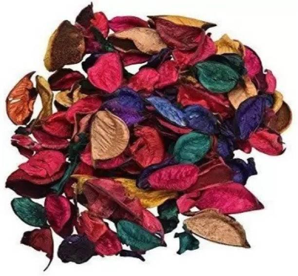 kraft moment Natural Home Decor Multi Color Potpourri Leaves Vase Filler