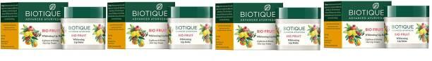 BIOTIQUE Fruit Lip Balm 12g*4 Pcs Fruit