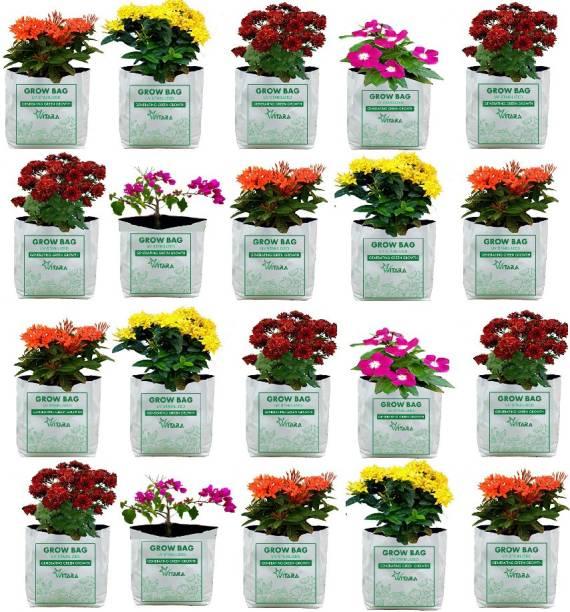 VITARA Terrace Gardening AND outdoor gardening ( 20 nos) Grow Bag
