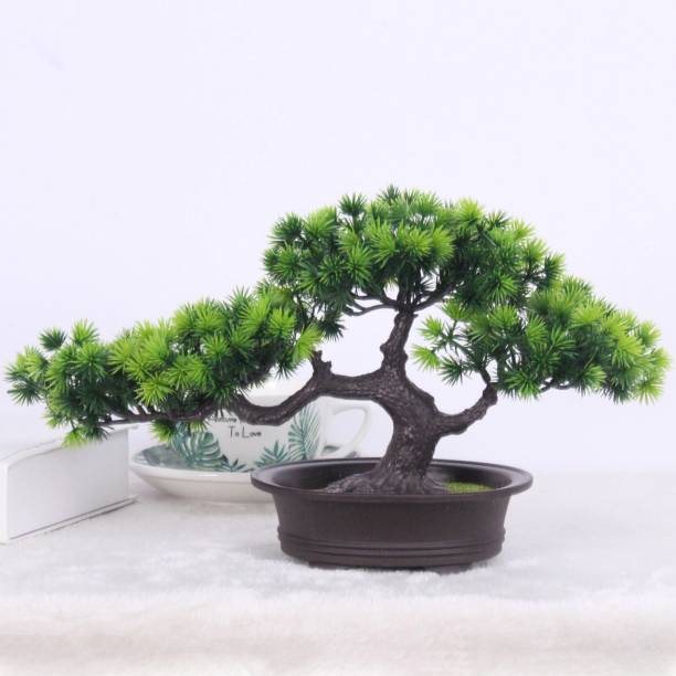 TIED RIBBONS Bonsai Wild Artificial Plant  with Pot
