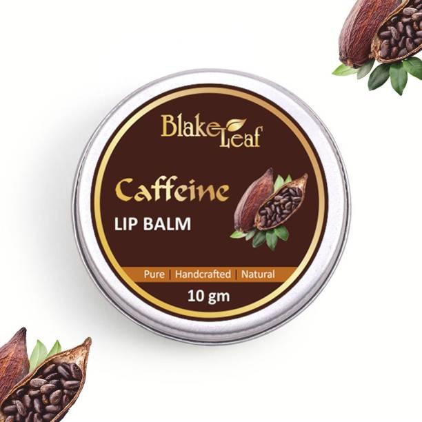blake leaf cosmetics Blake Leaf Natural Handmade Ayurvedic Chemical & Paraben Free Lip Balm For Dry & Chapped Lips choco