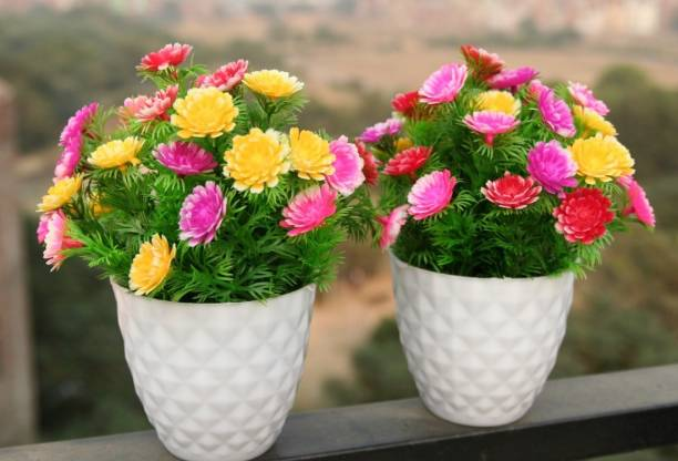 Nimkar's Set of 2 Artificial Flower Plants Bonsai Potted Plastic Faux Grass Fake Topiaries Shrubs for Home, Garden and Office Decor Bonsai Wild Artificial Plant  with Pot