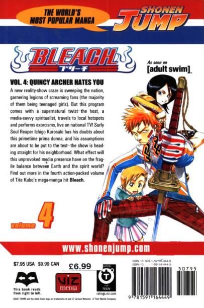 Bleach, Vol. 4