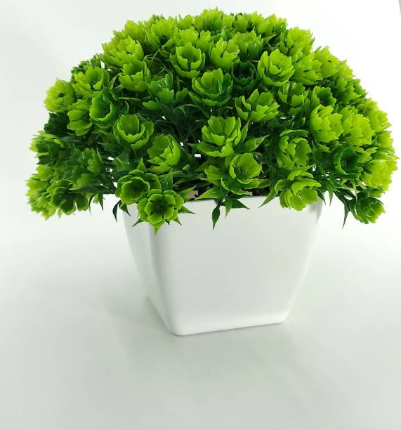 RESILIENCE Best For Home/Office Table Decoration or Gift Table Flower with Pot Bonsai Wild Artificial Plant  with Pot