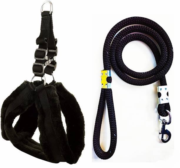 cavaly Dog Harness & Leash