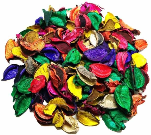 kraft moment Potpourri Flowers Leaves Without Fragrance only for Home Decor, Decoration (Multicolour) Vase Filler