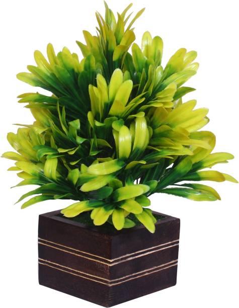 MODO Artificial Bonsai Plant With Wooden Square Pot for Home & Office Decor (22 CM) - Yellow Bonsai Artificial Plant  with Pot
