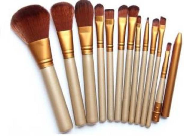 FEGURO Professional Parlor Use Makeup Brush Set (12 Pcs)