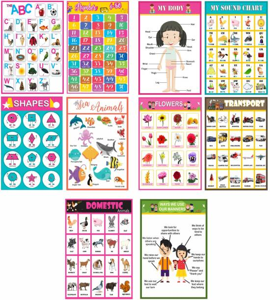 ABC , Numbers, Body Parts, Sounds, Shapes, Sea Animals, Flowers,Transports, Domestic Animals and Good Manners Educational A3 Posters/Charts for Preschool Kids Set of 10 Paper Print
