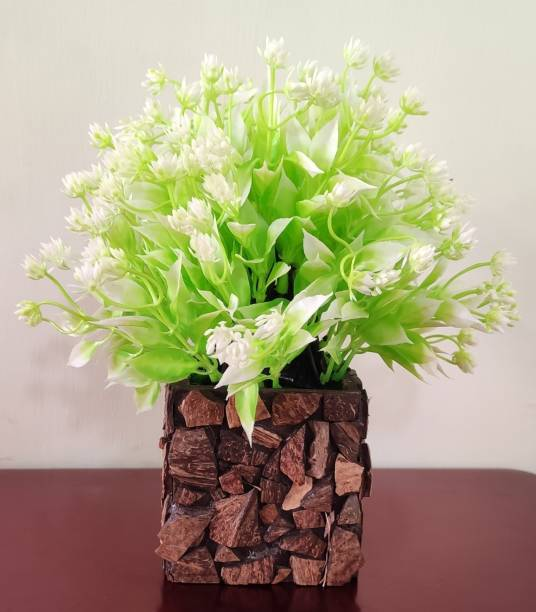 BK Mart Great For Home/Shop/Office/Gift Table Flower with Coconut Pot Bonsai Wild Artificial Plant  with Pot