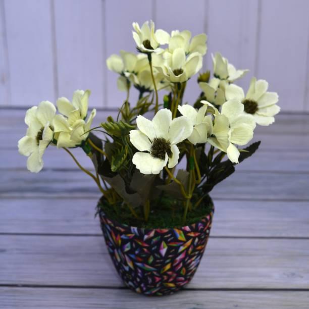 Flipkart Perfect Homes Multicolor Chrysanthemum Artificial Flower  with Pot
