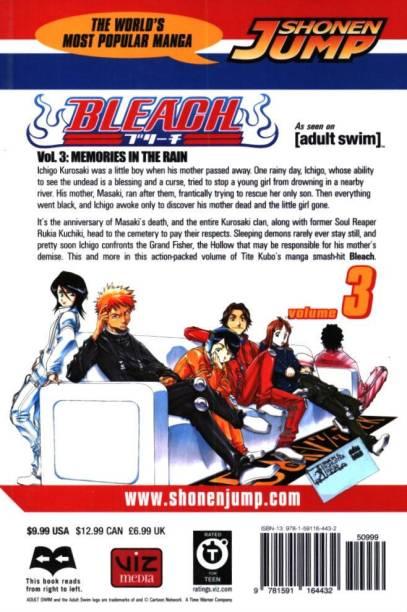 Bleach, Vol. 3