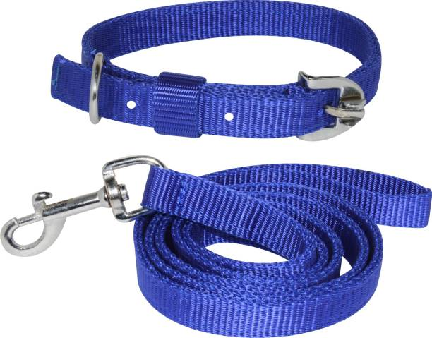 PEDIGONE Dog Belt Combo of Blue Dog Collar with Dog Leash Specially for Medium Breed Under 30kg Dog Collar & Leash