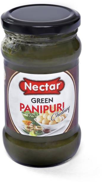 PANEL'S NECTAR PANI PURI CHUTNEY Homemade  Spicy Delicious Test   A perfect blend of pure spices Gol Gappa Chutney Paste