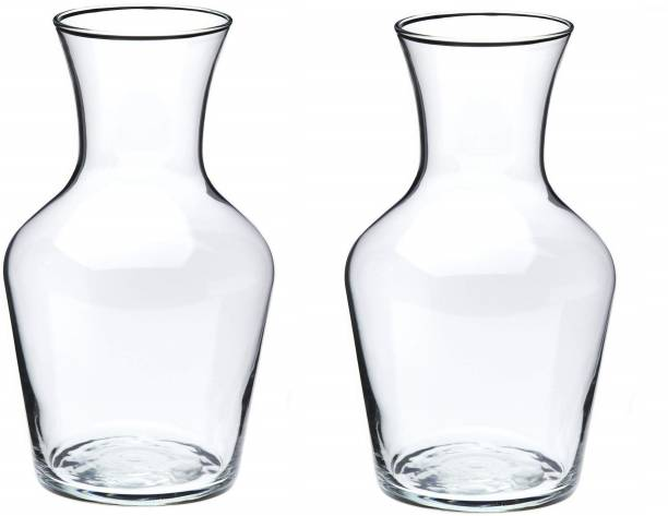 AGAMI Beautiful Transparent Bootle Shape Glass Pots for flowers and plants Plant Container Set