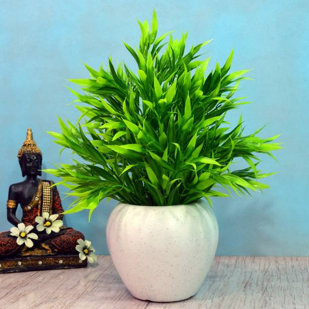 DecoreBugs Bamboo Leaves Wild Artificial Plant  with Pot