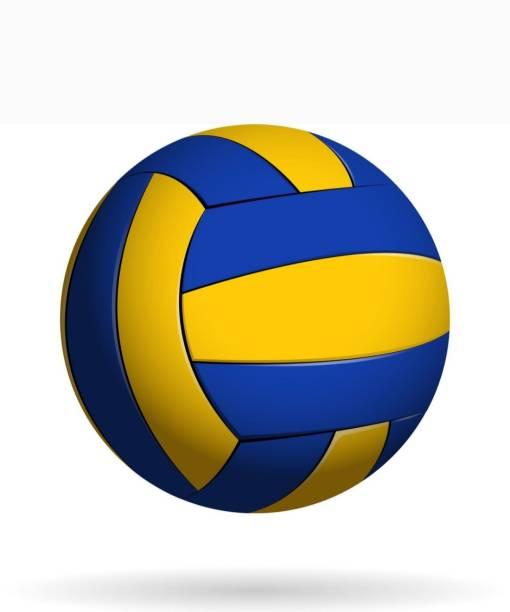 clark classc 9996 best qality volleyball Volleyball - Size: 4