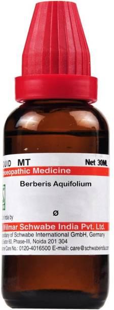Dr.Willmar Schwabe India Berberis Aquifolium Q Mother Tincture