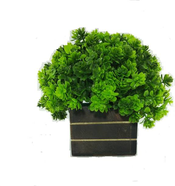 RESILIENCE Artificial Fancy Plants for Table, Showcase, Hall, Living Room Decoration Bonsai Wild Artificial Plant  with Pot