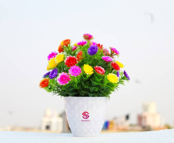 shanol Multicolor Daisy Artificial Flower  with Pot