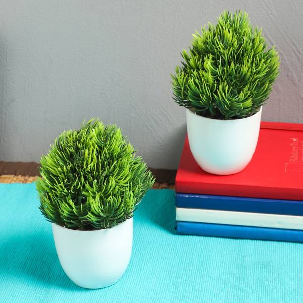 Flipkart SmartBuy Set of 2 Table Top Mini Bonsai for home office decoration gift Bonsai Artificial Plant  with Pot