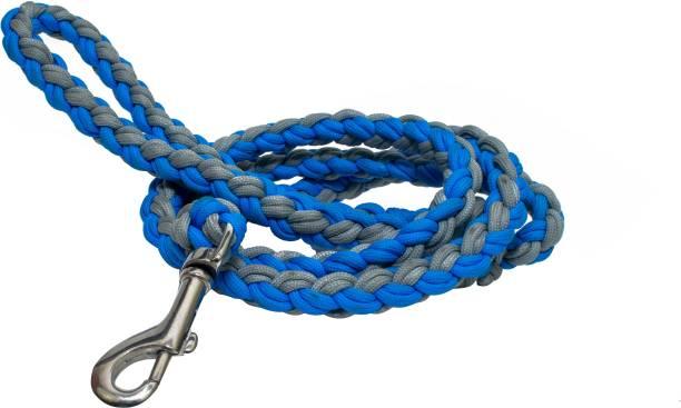 Paracraft Dog Collar & Leash