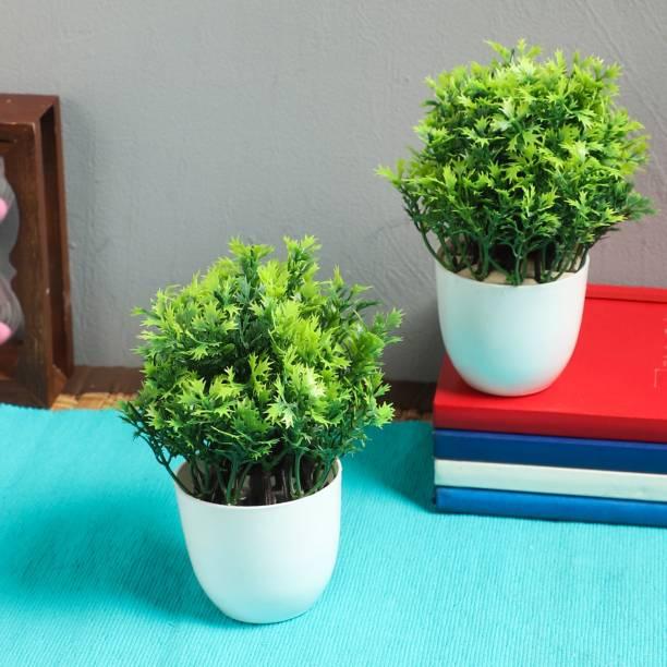 Flipkart SmartBuy Set of 2 mini Table Plants Bonsai Wild Artificial Plant  with Pot
