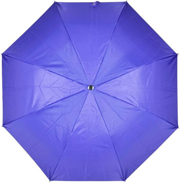 Fendo 2 Fold Auto Open Umbrella