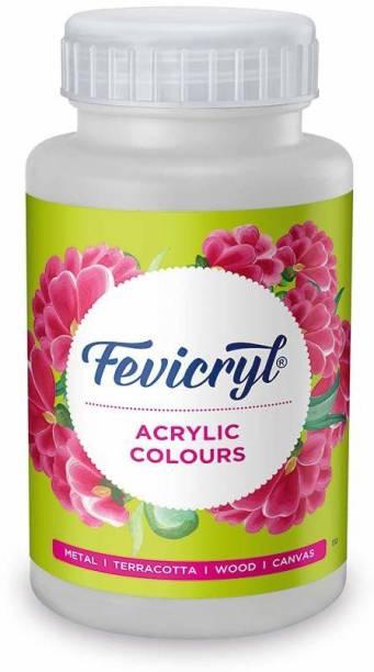 fevicryl Pidilite Acrylic Colour (500 Ml) White