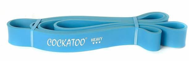 COCKATOO EXERCISE LOOP BAND - HARD Resistance Tube