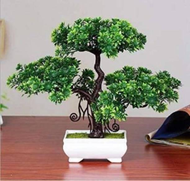 Aj style Bonsai Wild Artificial Plant  with Pot