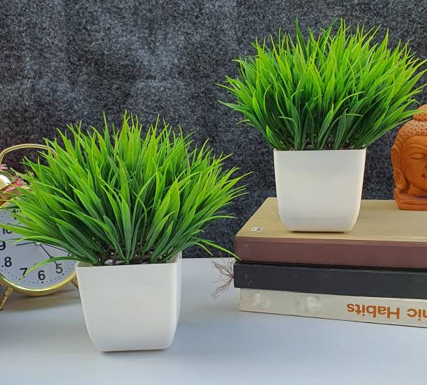 Flipkart SmartBuy Set of 2 Great For Home Or Office Decoration or birthday Gift, Table Top Bonsai Artificial Plant  with Pot