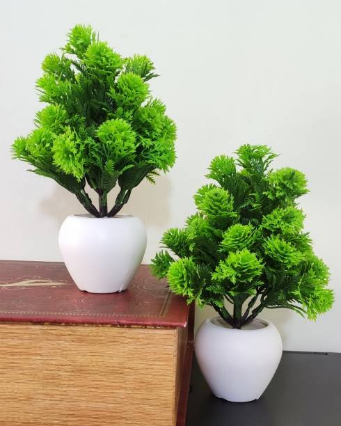 BK Mart Set of 2 Mini Table Flower top Bonsai for home shop office decoration gift Bonsai Wild Artificial Plant  with Pot