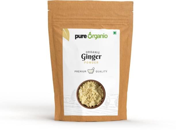Pure Organio Organic Dry Ginger Powder - Sonth