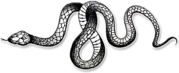 voorkoms Snake Tattoo Temporary Body Waterproof Boy and Girl Tattoo