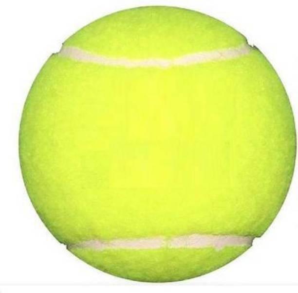 Sport Anticq Rubber Cricket Tennis Ball for Cricket Practice - Set of 1, Green Tennis Ball