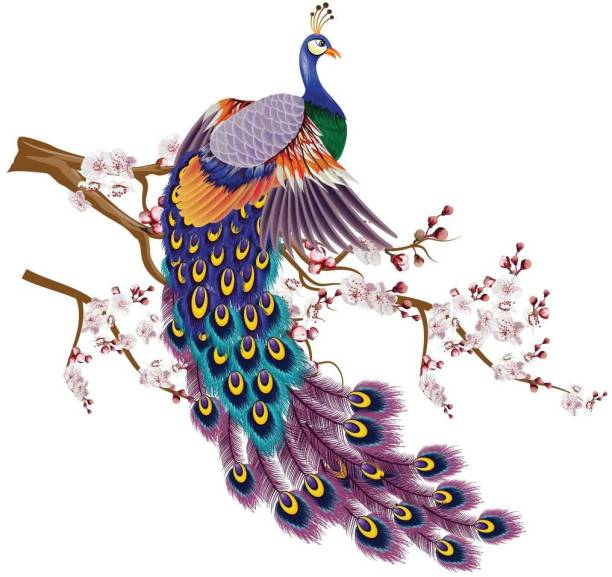 ASIAN PAINTS Extra Large Wall-Ons 'Vibrant Peacock' Decal, DIY Removable Peel and Stick Wall Sticker