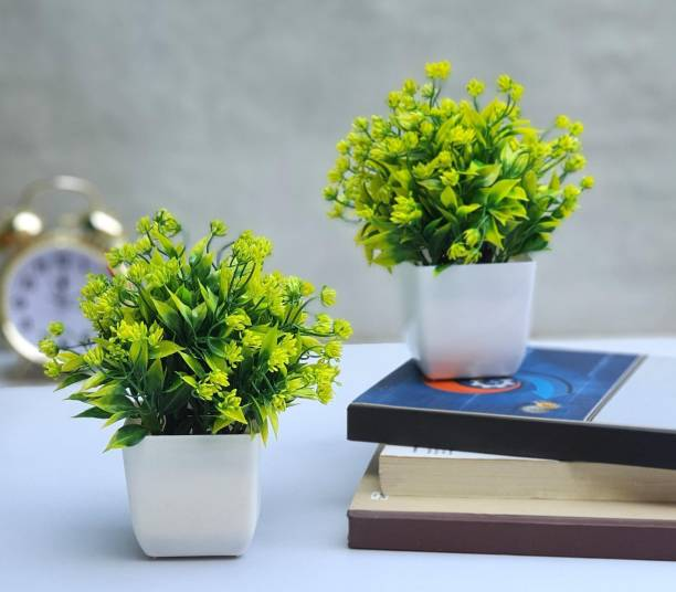 Flipkart SmartBuy Set of 2 Bonsai Artificial Plant  with Pot