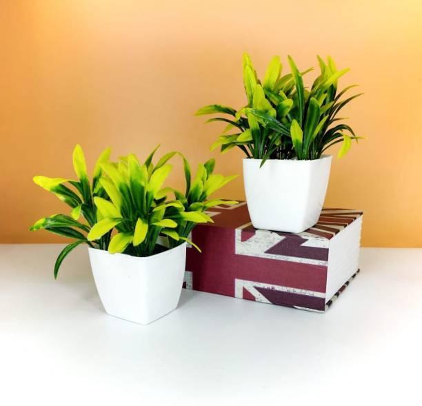revcart Bonsai Artificial Plant  with Pot