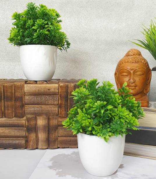 Flipkart SmartBuy Set of 2 Mini Green Table plant for home office , decoration Bonsai Wild Artificial Plant  with Pot