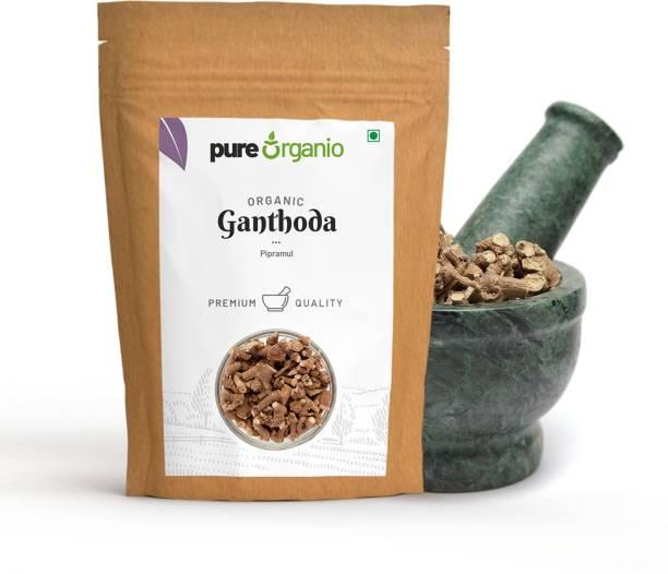 Pure Organio Organic Ganthoda - Piplamul